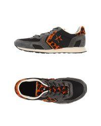 Converse - Black Low-tops & Sneakers - Lyst