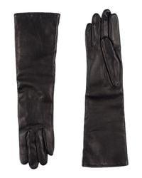 Lanvin - Black Gloves - Lyst