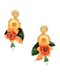 Dolce & Gabbana - Orange Earrings - Lyst