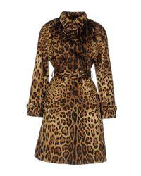 Dolce & Gabbana - Brown Overcoats - Lyst