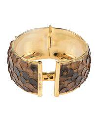 Roberto Cavalli - Brown Bracelet - Lyst