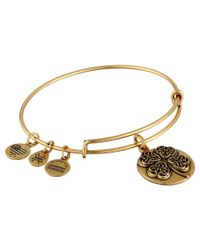 ALEX AND ANI - Metallic Four Leaf Clover Iii Bracelet - Lyst