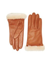 Ugg - Brown Classic Leather Smart Glove - Lyst