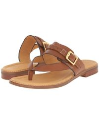 Sperry Top-Sider Brown Gold Cup Brynn