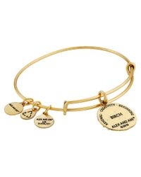 ALEX AND ANI - Metallic Ruler Of The Woods - A New Day Birch Bangle - Lyst