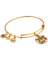 ALEX AND ANI | Metallic Ruler Of The Woods - Tree Of Existence Ash Bangle | Lyst
