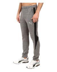 PUMA - Gray Evostripe Proknit Pants for Men - Lyst