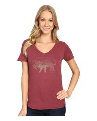 United By Blue - Multicolor Starry Bison - Lyst