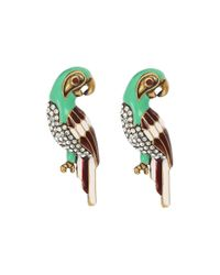 Marc Jacobs | Green Charms Tropical Parrot Studs Big Earrings | Lyst