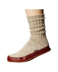 Acorn - Gray Slipper Sock - Lyst