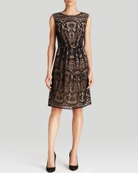 Adrianna Papell Dress  Sleeveless Belted Lace Fit and Flare - Lyst