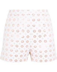 Markus Lupfer - Rosannah Cotton-blend Jacquard Shorts - Lyst