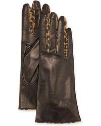 Portolano Leather Forchette Glove - Lyst
