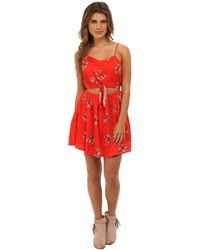 Mink Pink Flower Posy Dress - Lyst