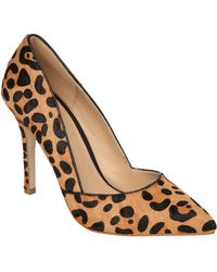 Jane Norman - Brushed Animal Print Pointed Court Shoes - Lyst