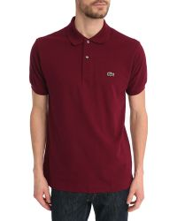 Lacoste Burgundy Coloured L1212 Mc Polo Shirt - Lyst