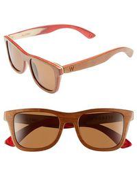 Woodzee - 'alpine' 48mm Polarized Wood Sunglasses - Lyst