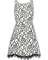 River Island Cream Lace Print Skater Dress - Lyst