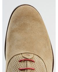 LAC - House Of Hounds Kane Tan Suede Derby Shoes - Lyst