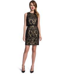 Cynthia Steffe Heather Metallic Floral Popover Dress - Lyst