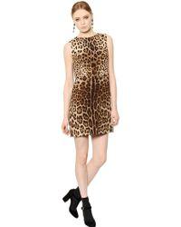 Dolce & Gabbana Leopard Printed Double Wool Crepe Dress - Lyst