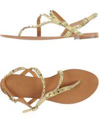 Ash Thong Sandal gold - Lyst