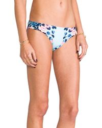 Seafolly Bella Rose Hipster Bottom in Blue - Lyst