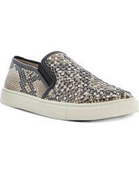 Steve Madden Eros Slipon Skate Shoes Naturalreptile - Lyst