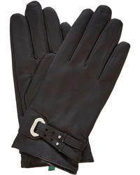 Lauren by Ralph Lauren - Double Belt and Grommet Gloves - Lyst