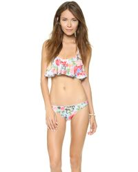 Mink Pink Baby Blues Ruffle Bikini Top Multi - Lyst