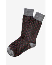 Express Hashtag Print Dress Socks - Lyst