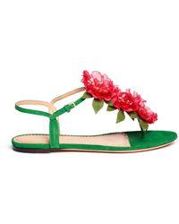 Charlotte Olympia Rosario Floral Appliqué Suede Sandals - Lyst
