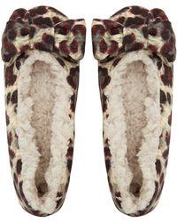 Ruby And Ed - Beige Leopard Velvet Bow Ballerina Slippers - Lyst