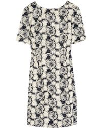 J.Crew - Collection Floral-Embroidered Cotton Dress - Lyst