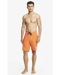 Express 9 Inch Large Lion Board Shorts - Lyst