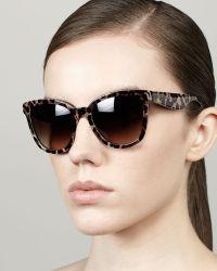 D&G Dolce Gabbana Leopardprint Square Sunglasses - Lyst