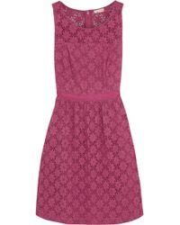 Collette By Collette Dinnigan Battenburg Lace Dress In