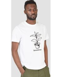 Garbstore | Sometimes Plant Tee White | Lyst
