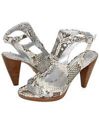 Belle By Sigerson Morrison snake heels - Lyst