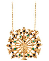 House of Harlow 1960 - Peacock Necklace - Lyst