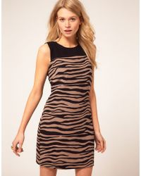 Oasis Zebra Dress - Lyst
