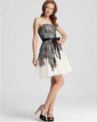 Max Cleo Dresses