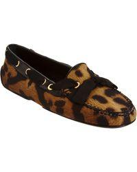 Giambattista Valli Leopard Print Apron Toe Flat - Lyst