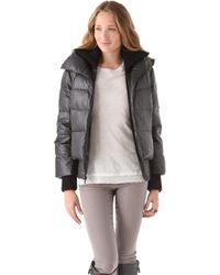 Alice + Olivia Judy Quilted Puffer Jacket black - Lyst