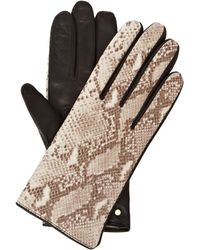 Ted Baker - Leather Gloves with Snake Print Cuff - Lyst