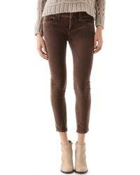Free People Velvet Skinny Pants brown - Lyst
