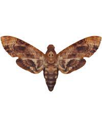 Tatty Devine - Tatty Devine Hawk Moth Brooch - Lyst