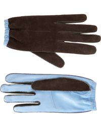 Balenciaga Tricolor Driving Gloves brown - Lyst