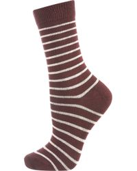 Topshop Wine Stripe Ankle Socks - Lyst