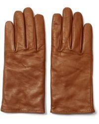 Club Monaco - Nicole Solid Leather Glove - Lyst
